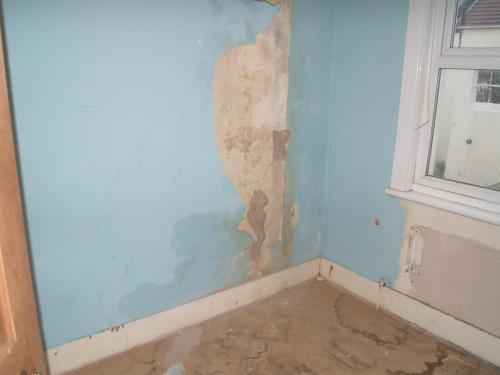 Hove Damp Proofing