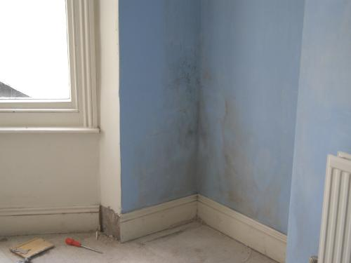Brighton Damp Proofing 2